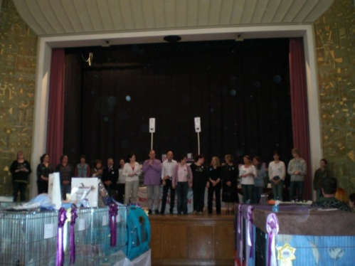 AACEns2009a1