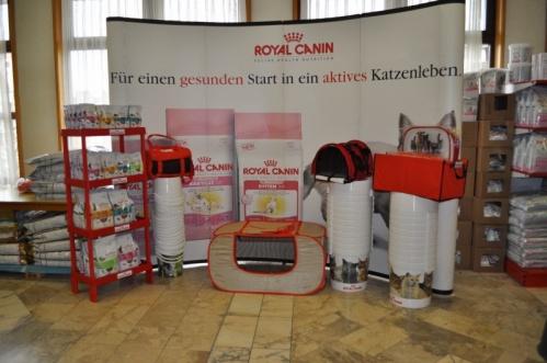 ACUEisenstadt2010a9