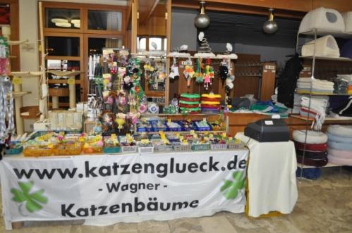 ACUEisenstadt2010c2
