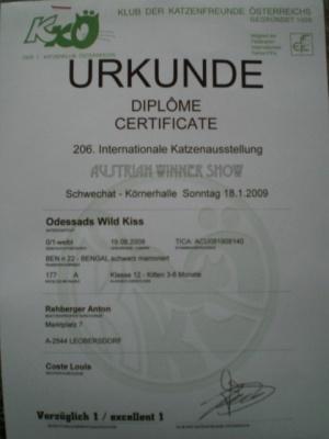 OevekSchwechat2009e6
