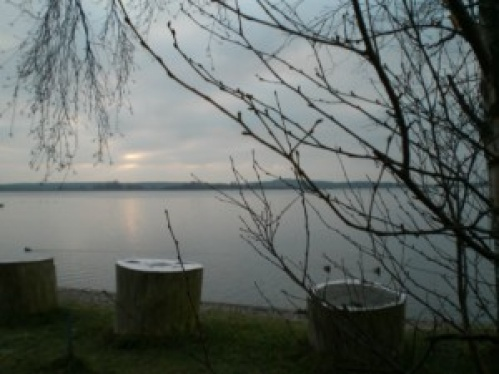 TicaCatsRangsdorf2009d3