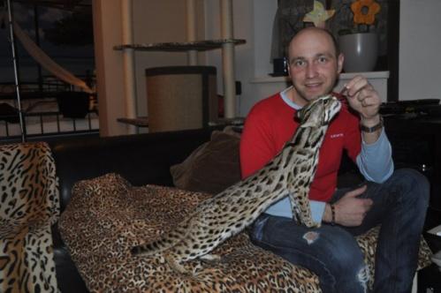 asianleopardcat005