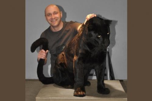 panther018