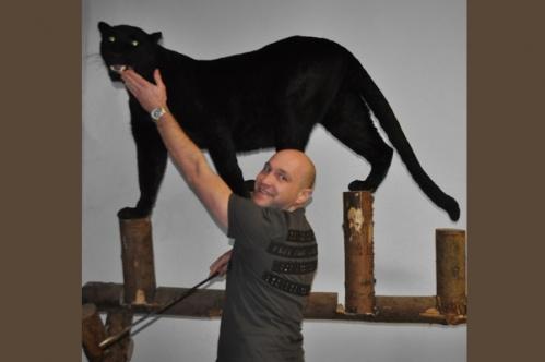 panther019